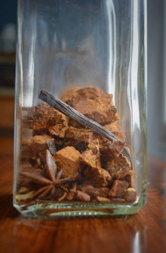 Chaga mushroom: how to use it