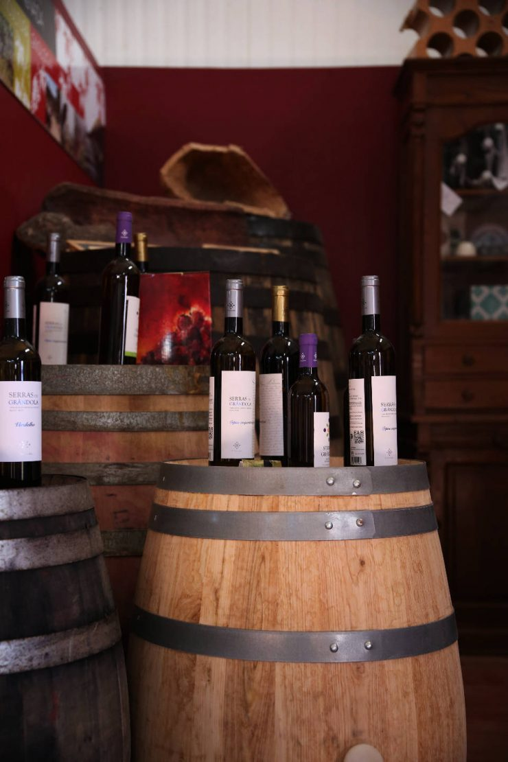 Wine cask | Wines of A serenada enoturismo, wine tourism in Portugal | Read the full review on Due fili d'erba | Two blades of grass | Thais FK