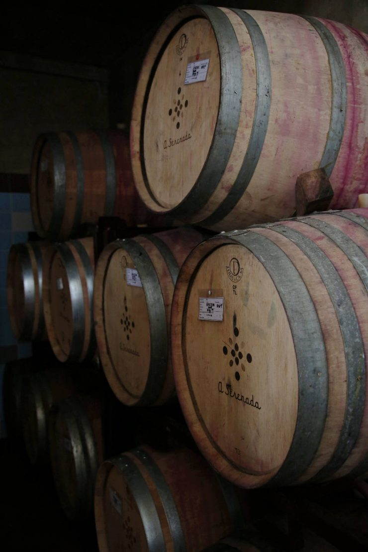 Wine casks  Wine cellar   Winery at A serenada enoturismo, wine tourism in Portugal   Read the full review on Due fili d'erba   Two blades of grass   Thais FK