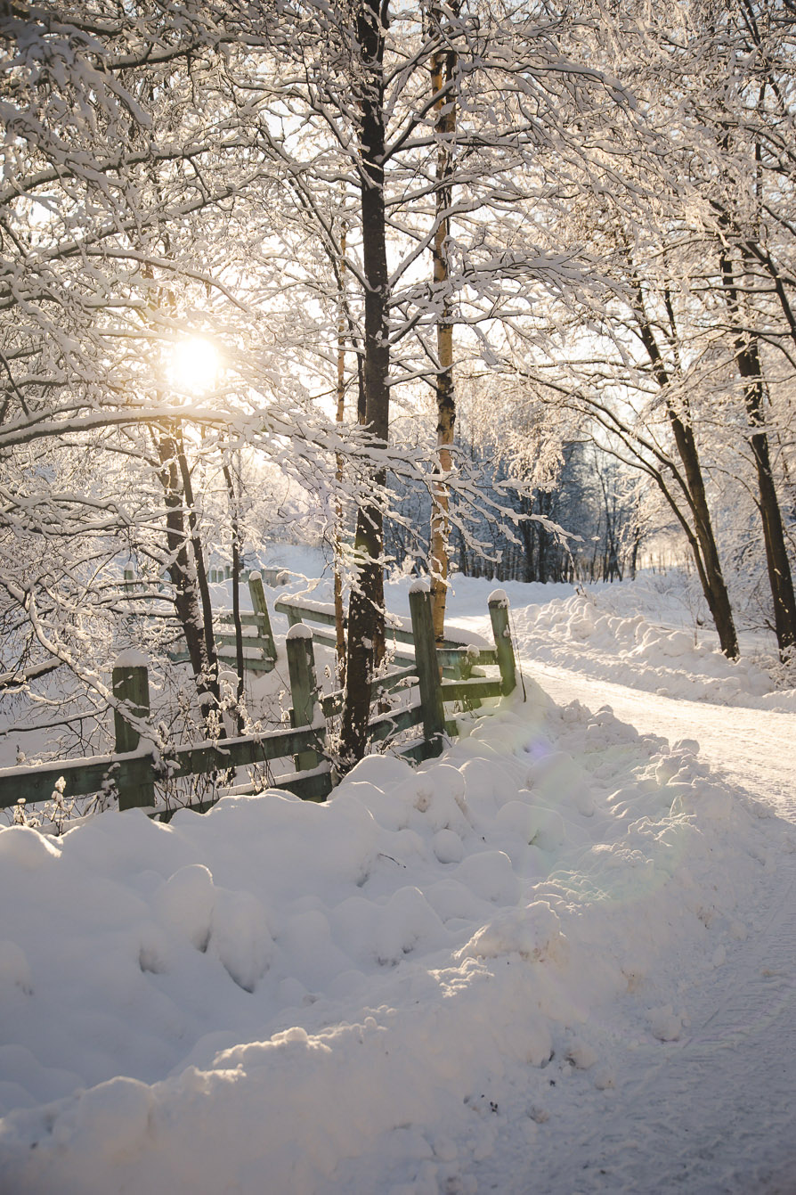 A bright winter day in Oulu, Finland | Visit Oulu, Visit Finland | Thais FK