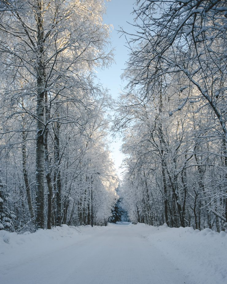 A bright winter day in Oulu, Finland   Visit Oulu, Visit Finland   Thais FK