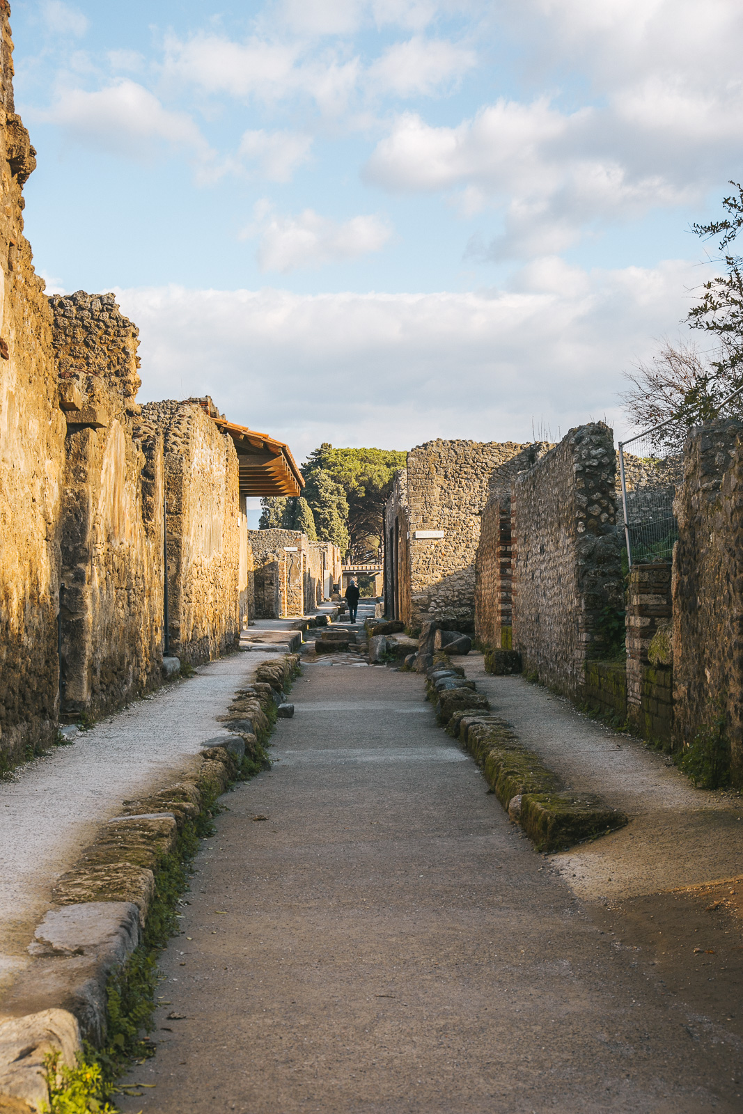 How to plan a visit to Pompeii | Pompeii: a travel guide by Thais FK | Due fili d'erba