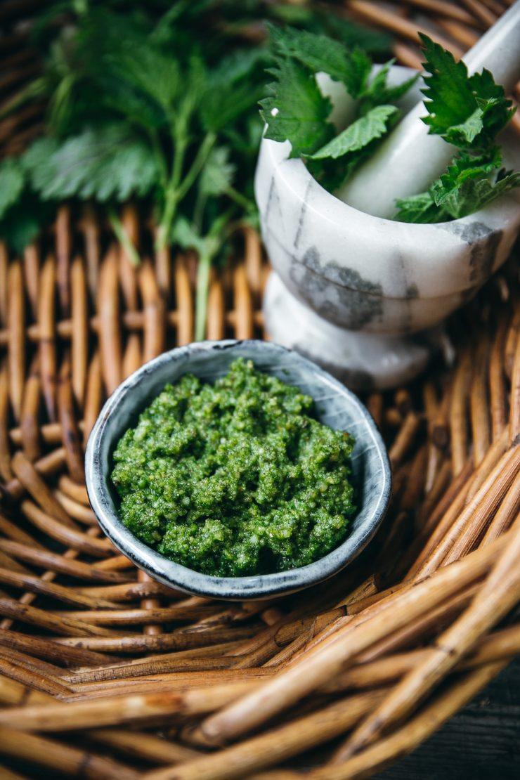 Nordic Foraging: Nettle + A Nettle pesto Recipe| The Adagio Blog by Thais FK
