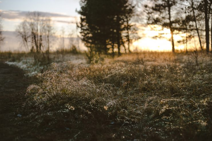 The Adagio Talk - observations on slow living, sustainable lifestyle and seasonality | The Adagio Blog | Why I buy clothes made with natural materials