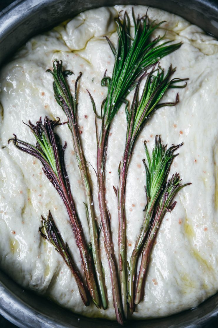 Fireweed shoots Focaccia Recipe on The Adagio Blog | Recipe, photos and styling by Thais FK