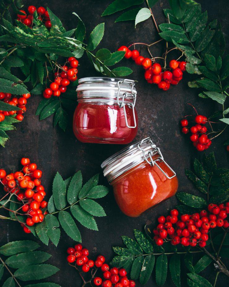 Rowan Jam Recipe on The Adagio Blog by Thais FK | Nordic Foraging