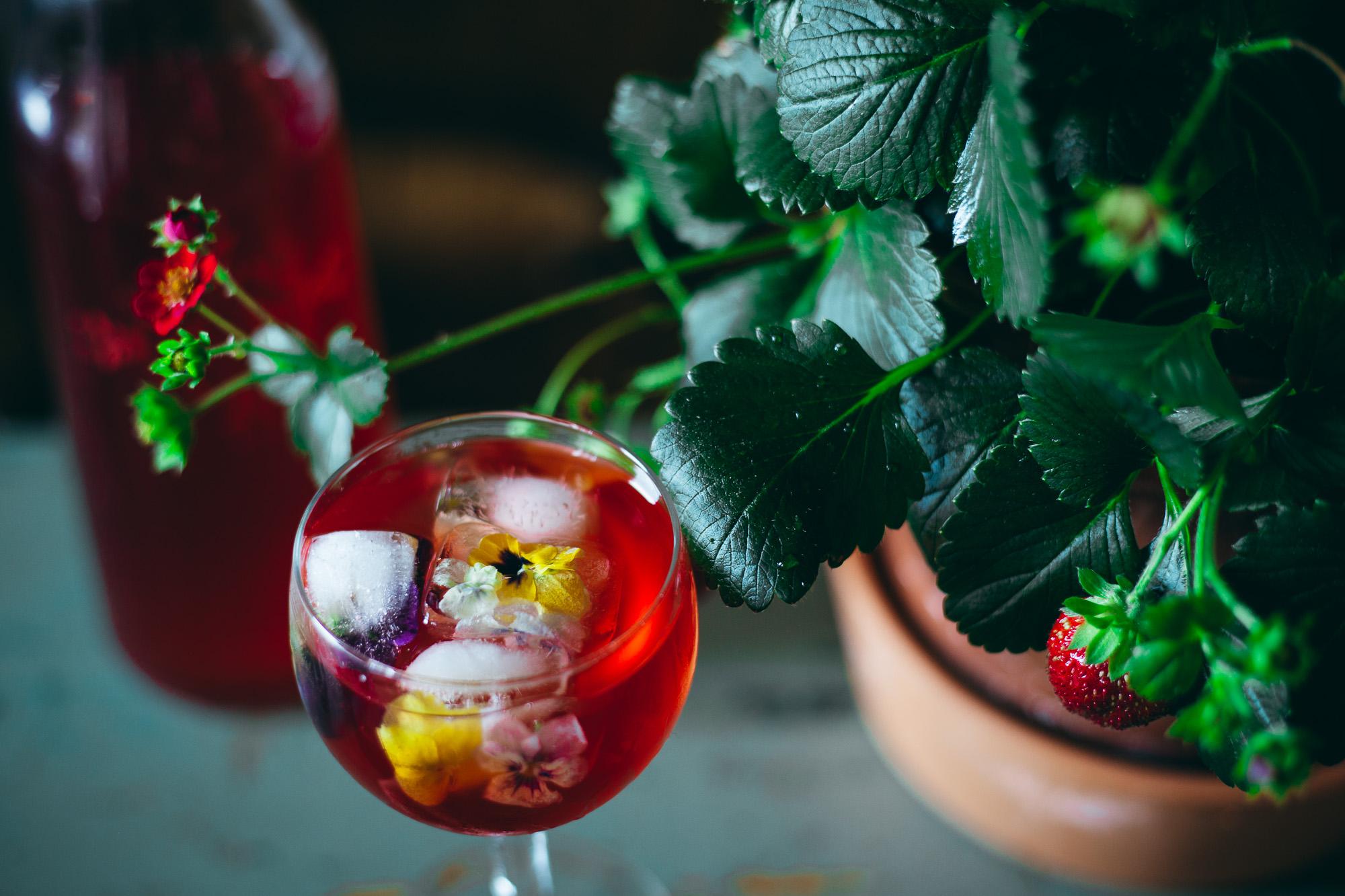 Zero-Waste Strawberry Juice - Adagio Blog by Thais FK