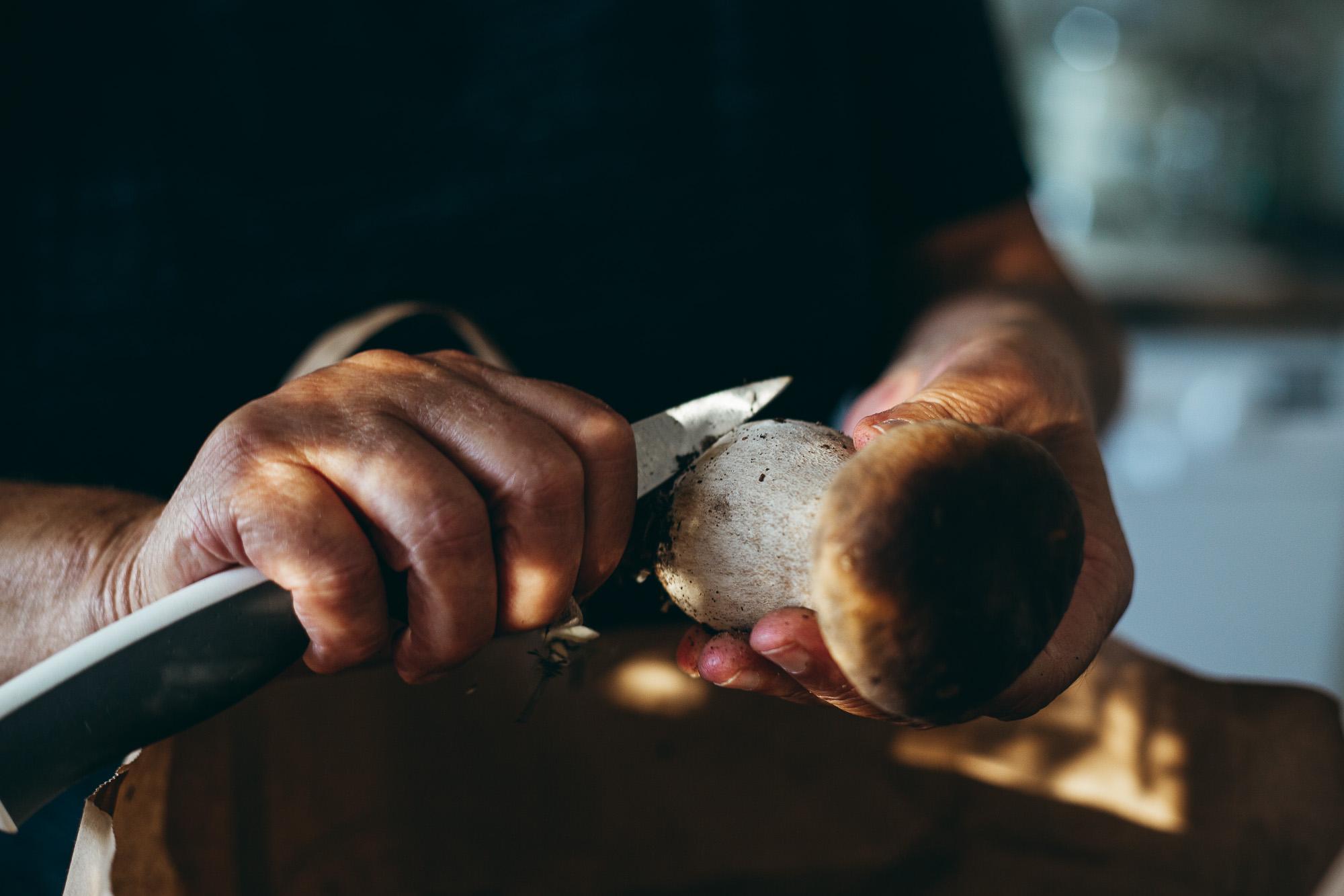 Wild Mushrooms - Nordic Foraging - The Adagio Blog